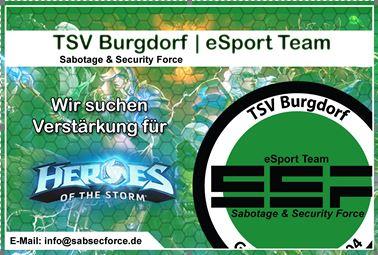 Heroes of the Storm – Spieler, Coaches und Teammanager gesucht